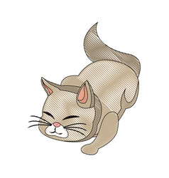 cat animal pet feline adorable draw vector image