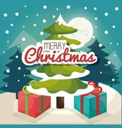 Christmas tree pine card vector