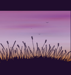 Doodle grass at sunset vector
