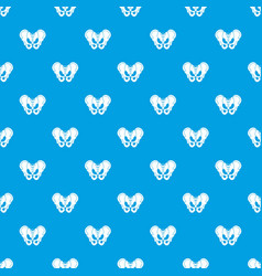 pelvis pattern seamless blue vector image vector image