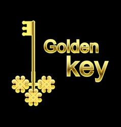 vintage golden key from all the doors on a black vector image vector image