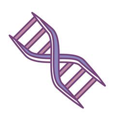 Dna human symbol vector