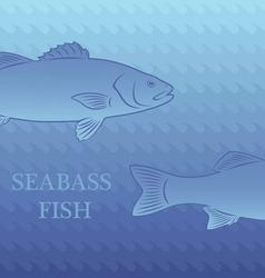 fish labrax vector image vector image