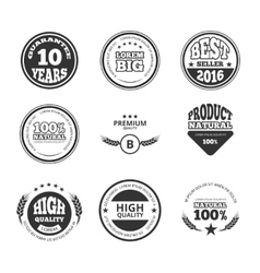 High quality premium guarantee vintage vector