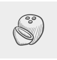 Coconut sketch icon vector