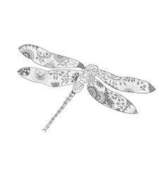 Stylized dragonfly isolated vector