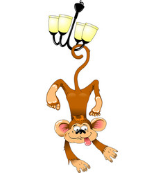 monkey on the chandelier vector image vector image