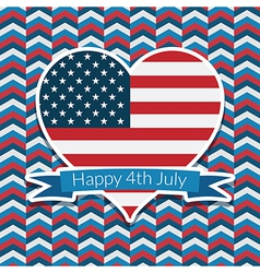 usa decoration vector image vector image