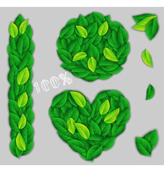 Elements of green leaves vector