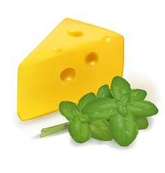 cheese with basil vector image