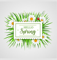 Hello spring banner with grass frame vector