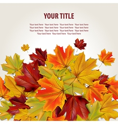 Beautiful autumn background vector