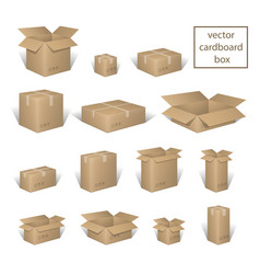 Carton delivery packaging open and closed box vector