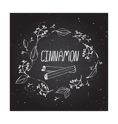Herbs and spices collection - cinnamon vector