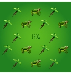 Green background with frog and unusual flower vector