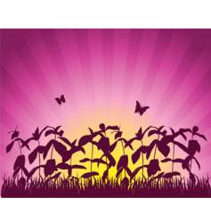 sunset crops vector image