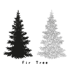 Christmas Tree Silhouette Contours and vector image