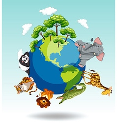 Wild animals around the world vector image