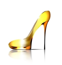 Large jewel shoe vector
