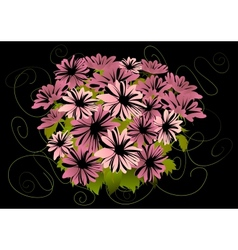 Abstract pink asters with dark background vector image