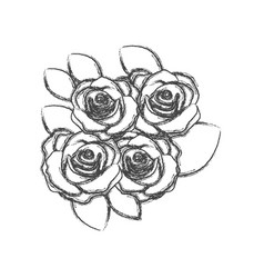 Blurred silhouette sketch roses bouquet decorative vector