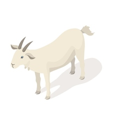 Isometric 3d of white goat vector image