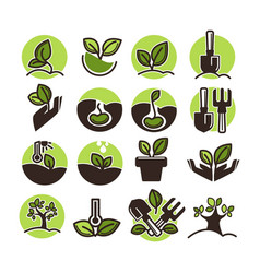 tree planting and green gardening horticulture vector image vector image