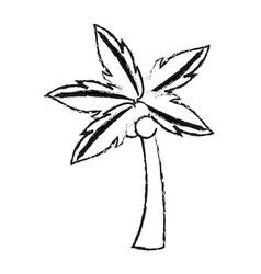 Palm tree icon image vector