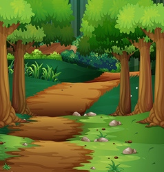 Forest scene with dirt road in the middle vector