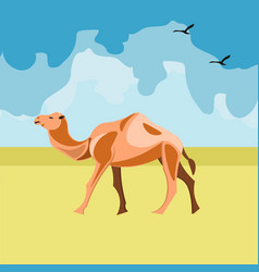 camel in the desert vector image vector image