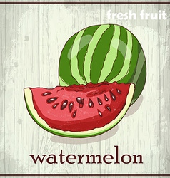 Hand drawing of watermelon fresh fruit sketch vector