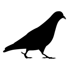 Going black pigeon silhouette vector