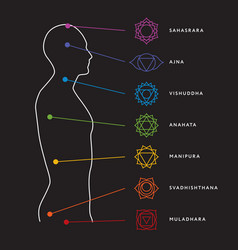 Chakra system of human body vector