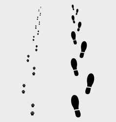 Footprints vector