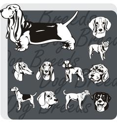 Dog breeds - set vector