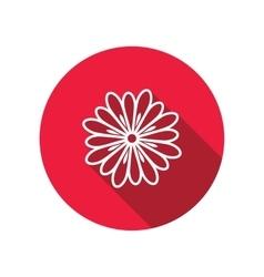 Chamomile chrysanthemum daisy flower icons vector image vector image