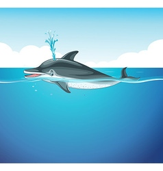 Dolphin splashing water in the sea vector image