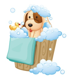 A dog inside a pail full of bubbles vector