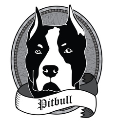 Pitbull Portrait Isolated dog vector image