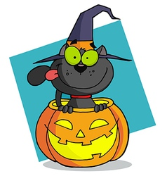 Cartoon character halloween cat vector