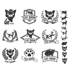 set of cat show labels isolated on white vector image