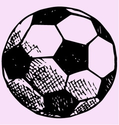 soccer ball football goal vector image vector image