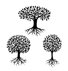 Set of abstract stylized trees with roots and vector