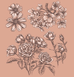 Detailed sketchbook hand drawn flower set vector