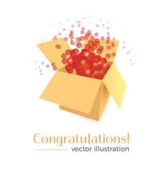 congratulations box concept vector image vector image