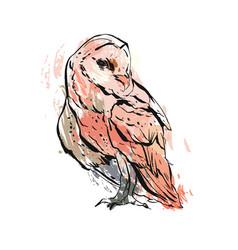 hand drawn abstract graphic owl vector image vector image