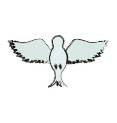 Isolated dove design vector