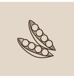Peapod sketch icon vector