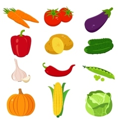 Set of colorful cartoon vegetables icons isolated vector