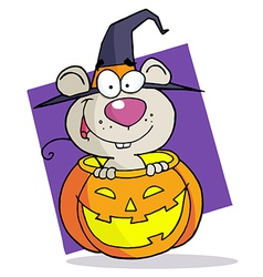 Cartoon Character Halloween Mouse vector image vector image